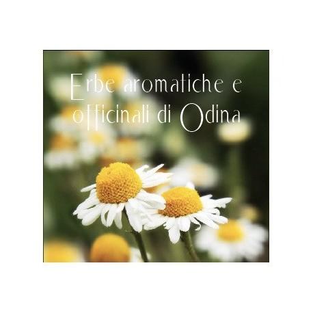 Erbe aromatiche e officinali di Odina
