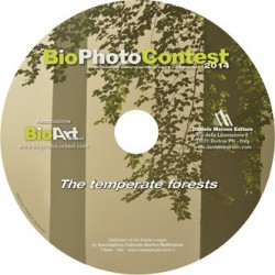 DVD Bio Photo Contest 2014 - The temperate forests